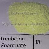 Pureza elevada CAS 10161-33-8 de Trenbolone Enanthate do edifício do músculo