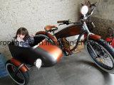 250With500With750W Sidecar dragen de Vette Pedelec/ZijE Fiets/de Zij Elektrische Vette Uitstekende ZijE Fiets van de Fiets/de Zij trike/E-ZijFiets Eletric/de Baby Ce van het Zijspan