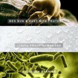 [شنس] مموّن غبار عثّ جرثوم مقاومة [هبوألّرجنيك] يلاءم [ديب بوكت] [بد بد] مسيكة, جو فراش تغذية