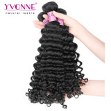 Onda profonda dei capelli peruviani dei prodotti dei capelli umani di Yvonne per le donne di colore