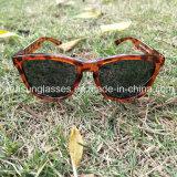새로운 디자인 UV400 세륨 En 증명서 형식 안경알 스포츠 색안경