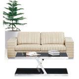 نوع تنفيذيّة بناء مكتب أريكة مع بناء مختلفة لأنّ خيارات