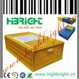 Bandejas plásticas do ovo de Transpotation das codorniz para a venda