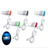 휴대용 마이크로 컴퓨터 2 LED 빛을%s 가진 운반 USB 힘 접합기 벽 충전기