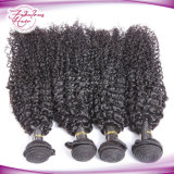 Weave Kinky indiano do cabelo Curly do Virgin natural da cor