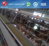 Material de alambre galvanizado pollo usar un tipo de jaula de pollo