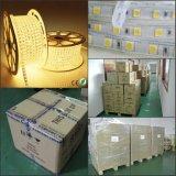 Flex tiras del LED 120V al aire libre de Navidad 60LED / M 5050 Cuerda de iluminación