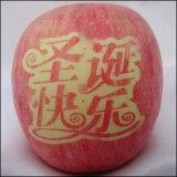 Съестные чернила перехода для печатание яблок поверхностного