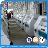 판매를 위한 100t/D 밀/제분기 기계장치