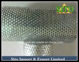 Setaccio perforato della maglia dell'acciaio inossidabile