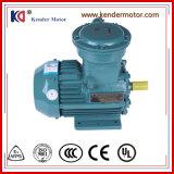 Установлен двигатель с электродвигателем Ex-Proof переменного тока с частотой преобразования