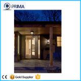 Hölzerner Furnier-Blattfarbanstrich-Tür-Entwurf