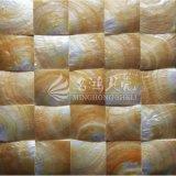 Gelbe quadratische Mosaik-Fliese des Lippenmopp-Shell-60*60mm