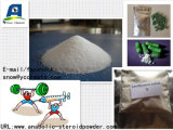 Fat Burner Perte de poids Hormone Levothyroxine Sodium / T4 Sodium pour le maintien du CAS CAS 55-03-8