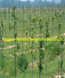 Guter Korrosionsbeständigkeit-Fiberglas-Pfosten für Trauben-Stützstange