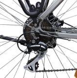 Modelo de la ciudad bicicleta eléctrica con la mitad de Motor de accionamiento (TDB14Z)