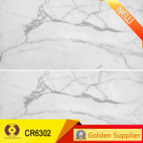 Mejor Calidad de la baldosa cerámica rústica 600X600m 66m208