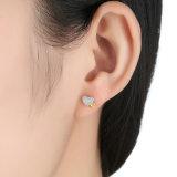 형식 귀걸이는 새 모델 소녀 유행 귀걸이를 디자인한다