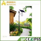 12W 5 гарантированности лет светильников интегрированный СИД ярда энергосберегающих украшая солнечный свет
