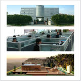 Monalisa 7,8-метровый открытый бассейн с джакузи с подогревом (M-3325)