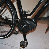 Niedriger Preis-elektrisches Fahrrad mit guter Qualität (RSEB-512)