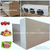 과일, 야채 및 고기를 저장하는 냉장 서늘한 방