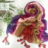 غيّب ألوان تدريجيّا يد يدهن شال مع يهدّب نمو وشاح