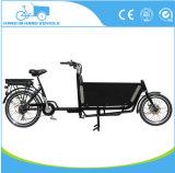 Bicicleta de 2 ruedas con la batería del motor