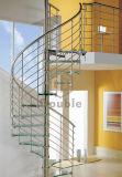 Escalera espiral modificada para requisitos particulares del acero inoxidable para al aire libre/de interior