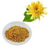 Olio di /Essential dell'estratto del piretro di Cinerariifolium del crisantemo