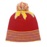 冬の女性ポンポンによって編まれる帽子の帽子