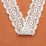 Nuovo merletto variopinto personalizzato di stile nylon