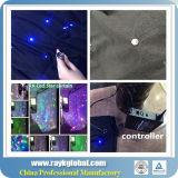 voltaje 110-220V y luces Twinkling especiales de la cortina de las estrellas LED del nombre LED del día de fiesta de las ocasiones