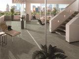 침실 디자인 매트 표면을%s 가진 시골풍 윤이 난 세라믹 지면 도와
