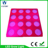 Epistar Chip hohe Leistung 1000W LED Grow Light Full Spectrum für Greenhouse