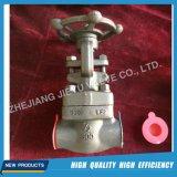 Forjado válvula de compuerta de acero con la cerradura
