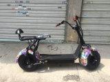 Cochi della città di 2000W Harley con il motorino elettrico di approvazione del Ce dell'altoparlante di musica