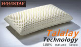 Talalay 기술 프로세스 100%년 성격 유액 거품 베개 기준 베개