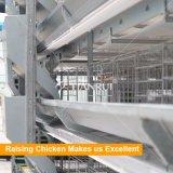 Bester Preis-Geflügelfarm-Geräten-Schicht-Rahmen für Verkauf