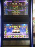 Verrückte Frucht-spielendes Kasino-videoSäulengang-Schlitz-Spiel-Maschine
