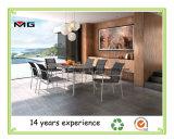 Exterior de acero inoxidable Muebles de Comedor mesa ovalada moderno