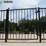 Загородка черного порошка Coated трубчатая/стальная загородка/загородка ковки чугуна