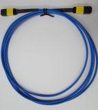 Cable de MPO / APC-MPO / APC fibra óptica Patch para el Centro de Datos