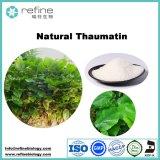 Polvere naturale di Thaumatin del dolcificante di 100%, estratto di Thaurnatocuccusdanielli