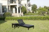 鋳造物のAliminum表および椅子の屋外のプールの家具