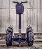 fuori dal motorino della strada da vendere il E-Motorino diritto elettrico del vagone per il trasporto dei lingotti