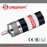 12/24V DC Brushless Gear Motor