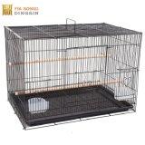 Faltendes Vogel-Rahmen-Geschäft für Haustiere