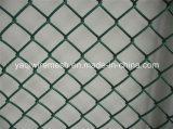 Clôture à mailles losangées galvanisé recouvert de PVC/fabriqués en Chine