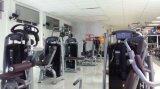 Машины серии TZ-6047 бабочек и новых спортзал бабочка машины/низкая цена органа машин